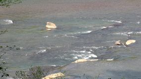 Gruzja, Jones mosta park, Mali gwałtowni i skały na Chattahoochee rzece, zbiory