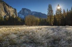 Gry av vintern Arkivfoto