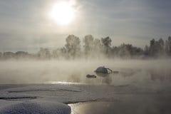 Gry den frostiga dagen i Februari, dimman och sol Royaltyfri Bild
