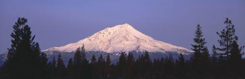 góry shasta Fotografia Stock