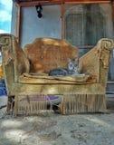 Gry trony zdjęcia royalty free