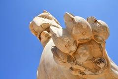 gryf statua Zdjęcia Stock