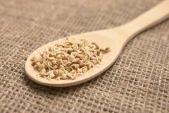 Gryk adra zdrowa żywność łyżka drewniana Neutralny tło Obrazy Stock