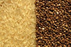 gryka kontakt ryż inni ryż Zdjęcia Stock