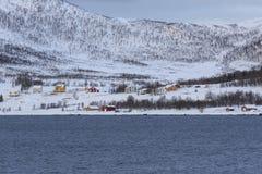 Gryllefjord的住宅房子 库存图片
