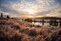 Gryning över floden royaltyfri foto