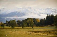 gryning fields berg royaltyfri bild