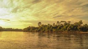 Gryning i breda flodmynningen, Mahakam, Borneo Royaltyfri Fotografi