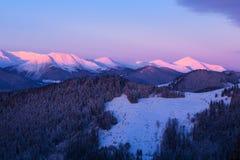 Gryning i vintern Carpathians Arkivbild