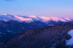 Gryning i vintern Carpathians Arkivbilder