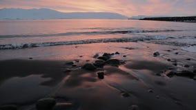 Gryning på stranden i Island arkivfilmer