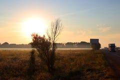 Gryning utanför staden hösten börjar En enorm sol stiger över det gulnade gräset dimmaängmorgon över vatten På vägen finns det bi Royaltyfri Fotografi