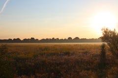 Gryning utanför staden hösten börjar En enorm sol stiger över det gulnade gräset Morgonmist Fotografering för Bildbyråer