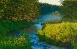 gryningflod Arkivfoton