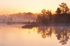 Gryningljus på sjön Arkivbild