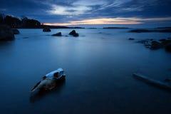 gryningmorgonskalle fotografering för bildbyråer