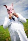 grypa Fotografia Stock