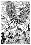 Gryphon. Engraved fantasy illustration. Gryphon or griffin. Monster with eagle head and lion body. Fantasy magic creatures collection. Hand drawn vector royalty free illustration