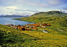 Grytviken, Geórgia sul Imagens de Stock Royalty Free