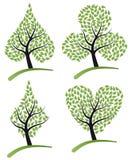 grzebaka kostiumu drzewo Fotografia Stock
