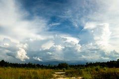 grzmot burzy nieba Podeszczowe chmury obrazy royalty free