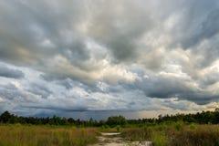 grzmot burzy nieba Podeszczowe chmury obraz royalty free