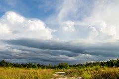 grzmot burzy nieba Podeszczowe chmury obraz stock