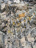 grzybowe skał Obrazy Royalty Free