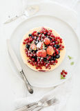 Gâteau au fromage avec les baies fraîches de jardin sur le dessus plus de Photos stock