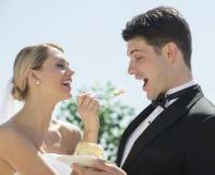 Gâteau de mariage de alimentation de jeune mariée gaie au marié Photographie stock