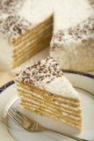 Gâteau de noix de coco Images libres de droits