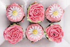 Gâteaux de tasse Image stock