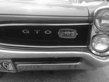 GTO. In the 50s these cars where called a Goat. Some of you may remember Stock Photo