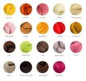 Guía caliente de la paleta de la lana merina de los colores con títulos Fotografía de archivo