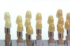 Guía del color de los dientes Foto de archivo