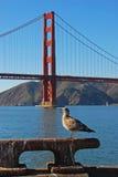 Guía turístico fotos de archivo libres de regalías