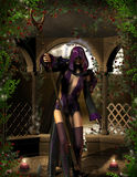 guślarki magiczna różdżka Fotografia Stock
