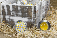 GU10 LED bulbs on straw in front of old  box Stock Image