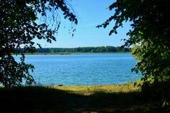 ?gua azul em um lago da floresta com pinheiros fotografia de stock royalty free