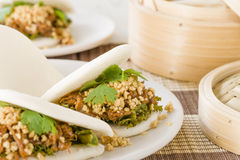 Gua Bao. Taiwanese sandwich of braised pork belly with pickled mustard greens, coriander and crushed peanuts in steamed buns Stock Image