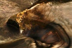 A água corre sobre a pedra dos peixes Imagens de Stock Royalty Free