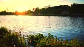 ?gua do lago pequeno que move-se lentamente no por do sol com a casa pequena na costa video estoque