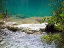 Água no lago Plitvice Fotos de Stock Royalty Free