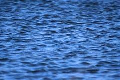 Água ondulada Fotografia de Stock Royalty Free