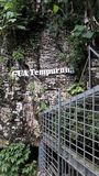 Gua Tempurung Royaltyfri Fotografi