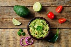 guacamole royaltyfria bilder