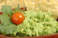 guacamole стоковое изображение