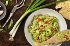 guacamole Lizenzfreie Stockbilder