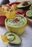 guacamole στοκ φωτογραφίες με δικαίωμα ελεύθερης χρήσης