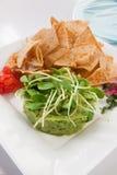 Guacamole avec le tacos photos stock